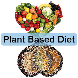 Dr. Esselstyns Plant Based Diet
